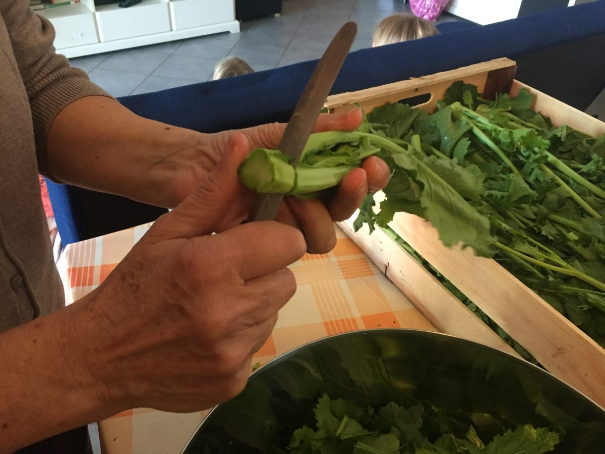 come pulire e cucinare le cime di rapa