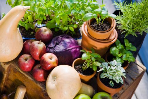 Frutta e verdura 5 volte al giorno