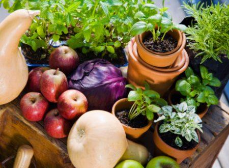 5 porzioni al giorno di frutta e verdura