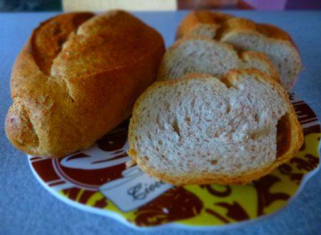 Pane integrale di kamut e olio extravergine di Olive Taggiasche