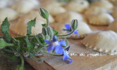Ravioli con farina di castagne ripieni di ricotta e borragine