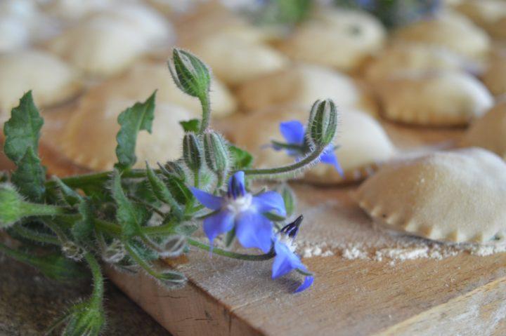 ravioli borragine castagne 001