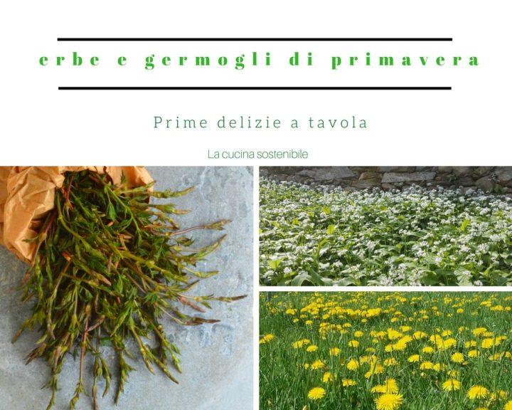 Erbe spontanee e germogli di primavera | Prime delizie a tavola