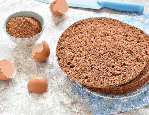 Pan di Spagna al cacao di Ernst Knam