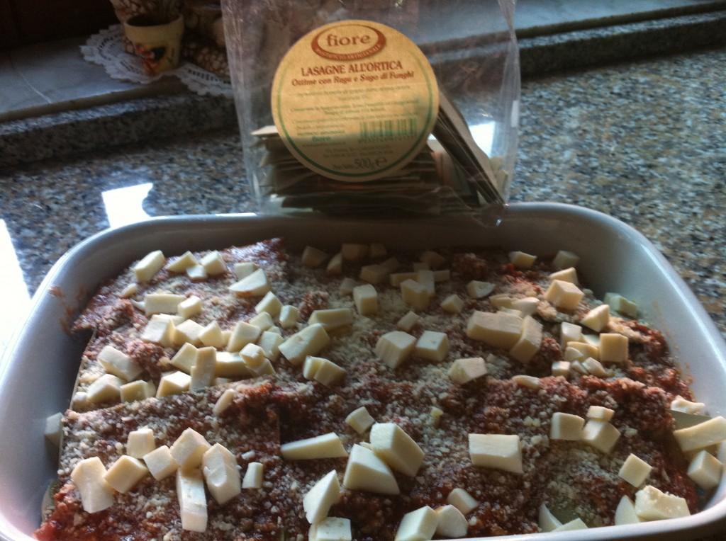 Lasagne all 39 ortica con funghi il mondo di adry for Cucinare ortica