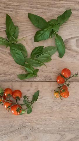 foglie di basilico fresco per aromatizzare la pasta