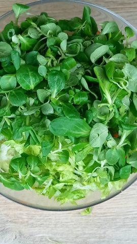 valeriana in insalata con pollo e verdure varie