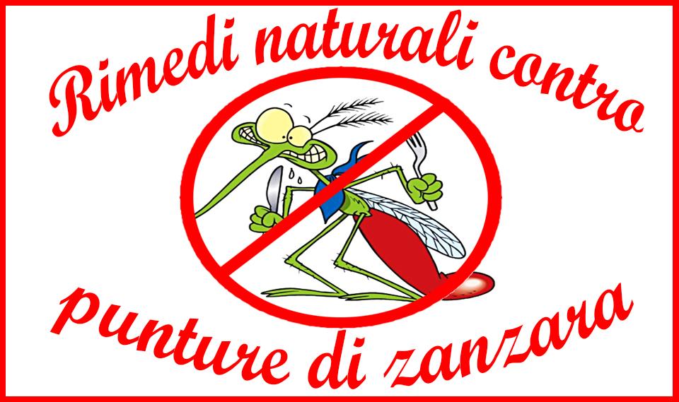 Rimedi naturali contro le punture di zanzare facili - Rimedi contro le zanzare in giardino ...