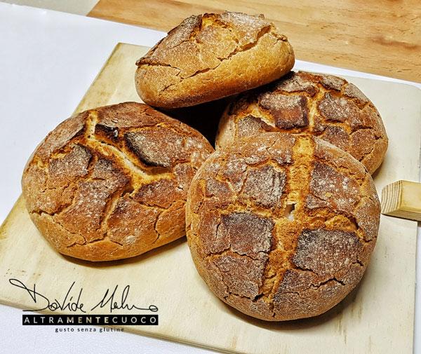 panini senza glutine ricetta farina revolution