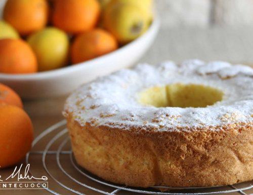 Chiffon cake senza glutine e senza lattosio