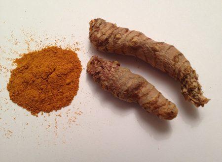 La curcuma – il curry indiano