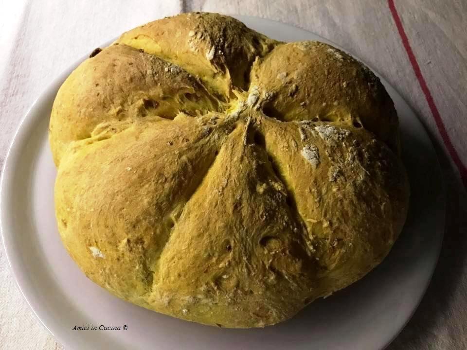 pane alla Zucca