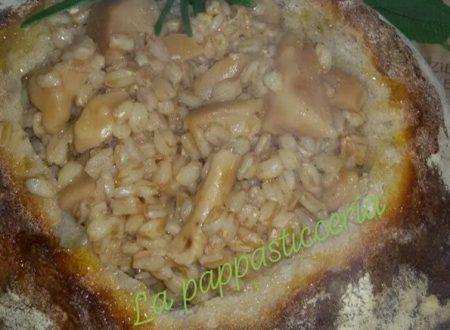 La zuppa dello Gnomo – farro e funghi porcini