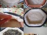pizza di oggi