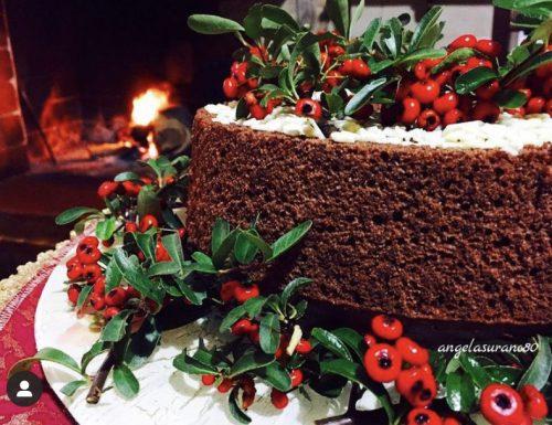 CHIFFON CAKE AL CACAO  ciambellone americano super veloce , golosissimo!!!