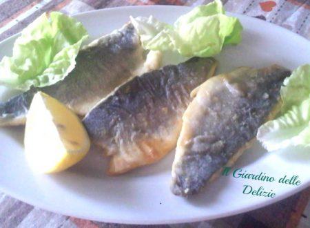 Branzino al vino bianco, secondo pesce