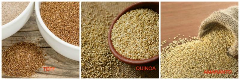 Teff, Quinoa, Amaranto