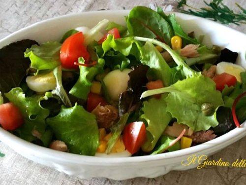 Sgombro in insalata mista ed uova di quaglia