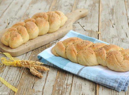 Treccia di pane morbido con semi