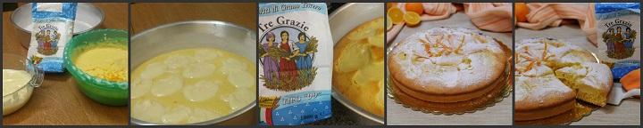 Torta agli agrumi con crema