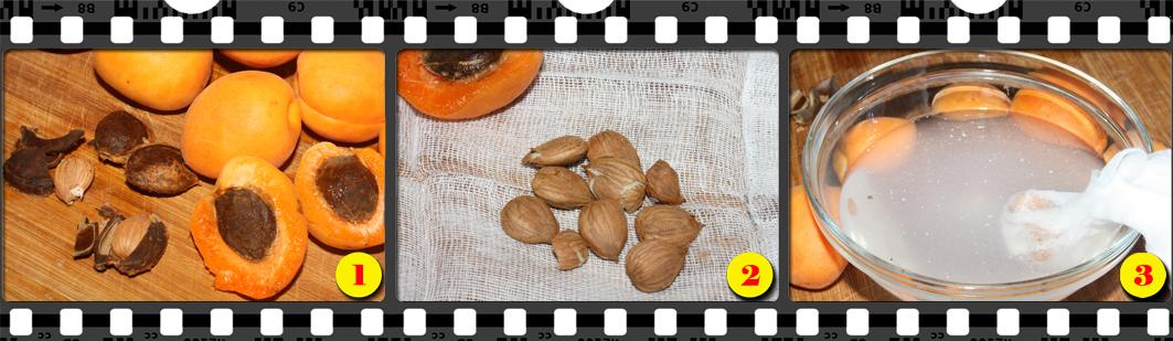 Orzata di semi di albicocca dolci.