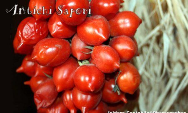 Pomodori Piennolo del Vesuvio.