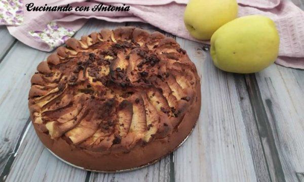 Torta di mele con scaglie di cioccolato