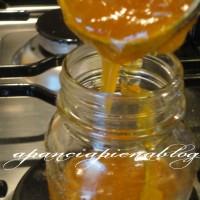 marmellata di albicocche a pancia piena blog