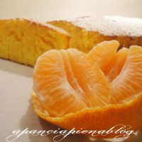 plumcake al mandarino a pancia piena blog
