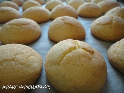 biscotti pronti biscotti al limone a pancia piena