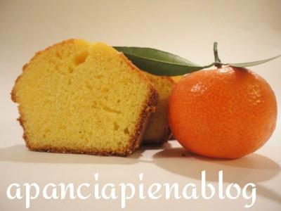 ciambella alle clementine a pancia piena.