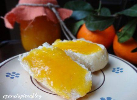 Speciale dolci con agrumi(ricette tradizionali e bimby)
