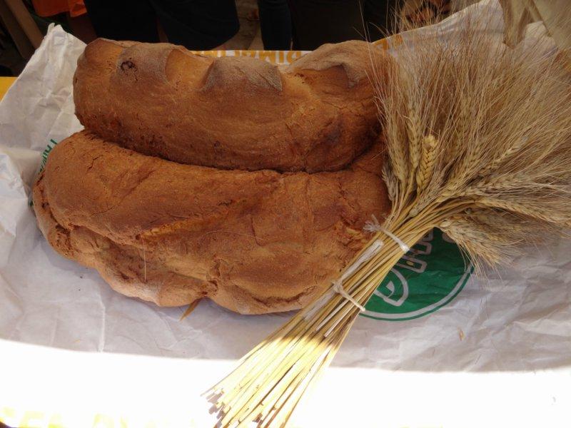 pane di matera 6