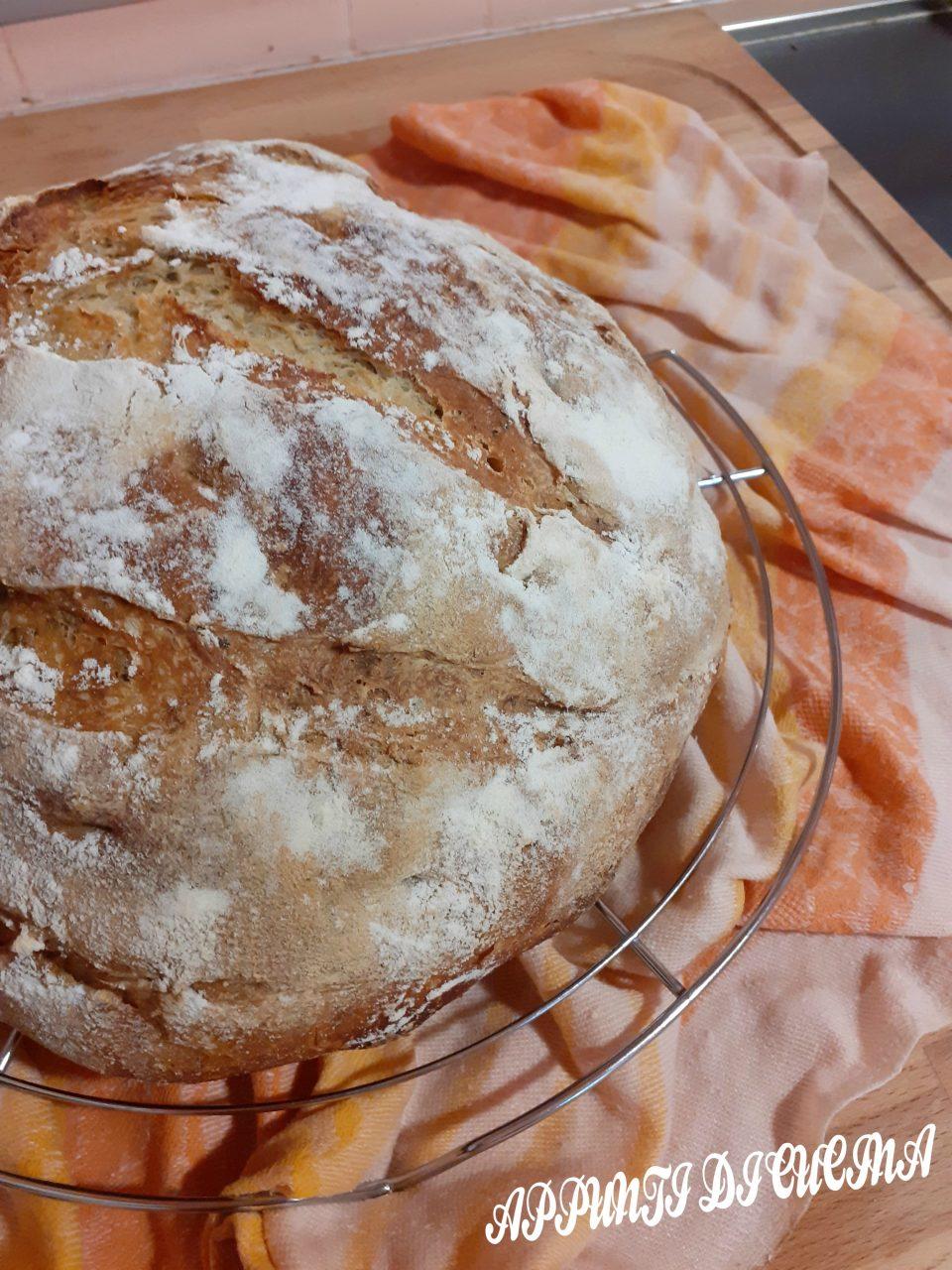 pane di semola con origano