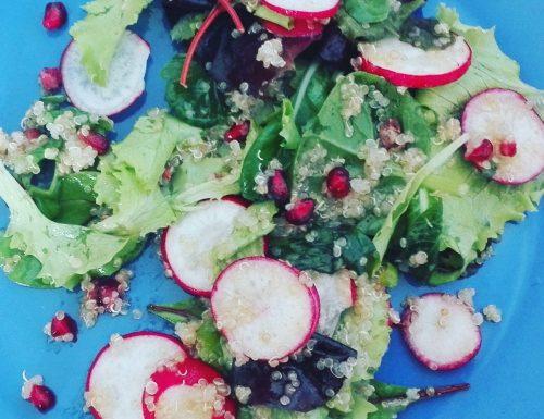Insalata di quinoa melograno e ravanelli