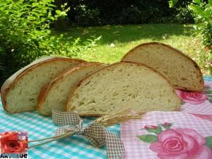 Pane di semola rimacinata di grano duro con PM