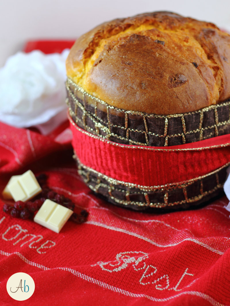 Panettone Cioccolato bianco e Mirtilli Rossi