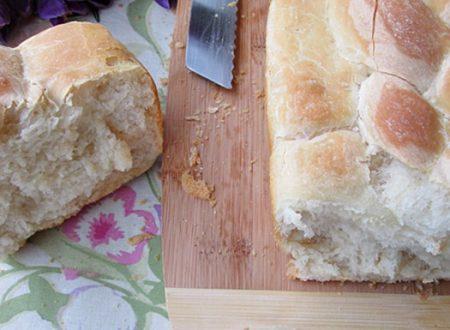 PAN BAULETTO Lievitazione metodo Tang Zhong ricetta passo passo