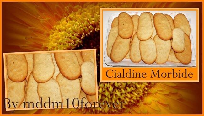 CIALDINE MORBIDE