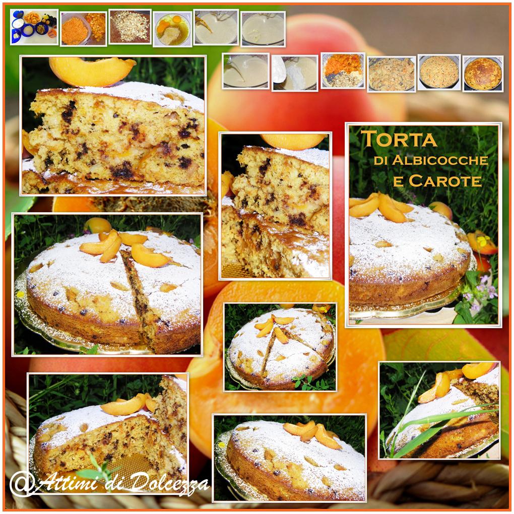 TORTA DI ALBICOCCHE E CAROTE copia