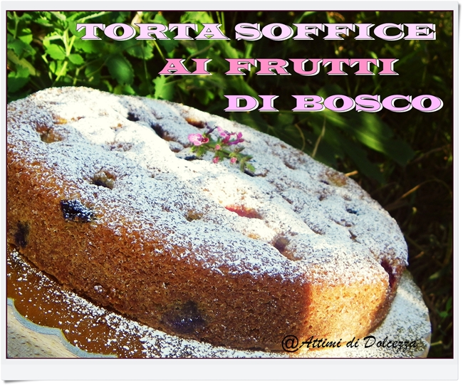 TOR SOFF AI FRU D BOSC (10)