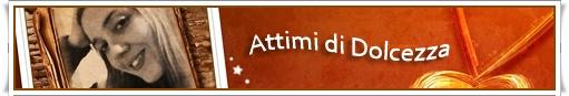 banner ATTIMI 02-2016