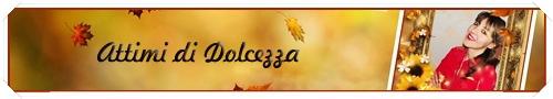 banner ATTIMI Ottobre 2015