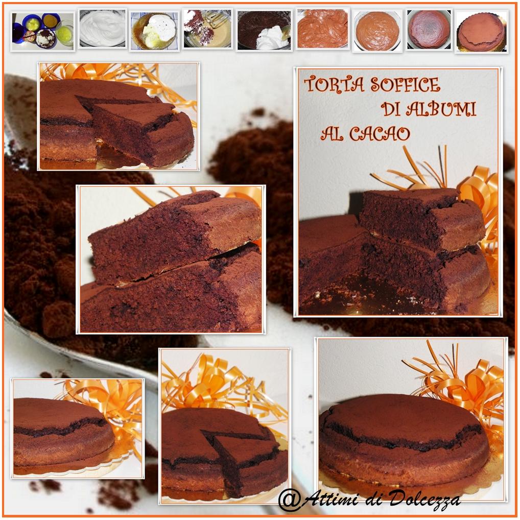torta-soffice-di-albumi-al-cacao