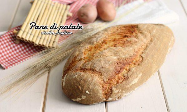 Pane di patate pugliese o puccia di patate