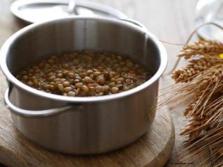 Cucinare le lenticchie [ricetta base]