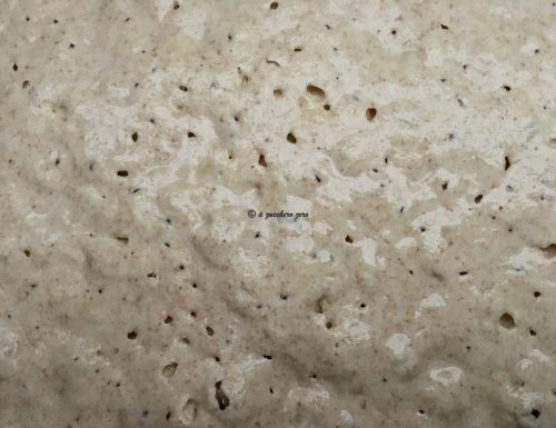 Come preparare il poolish integrale [pre impasto liquido] per pane e pizza