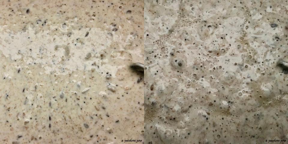 poolish farina integrale con semi tostati