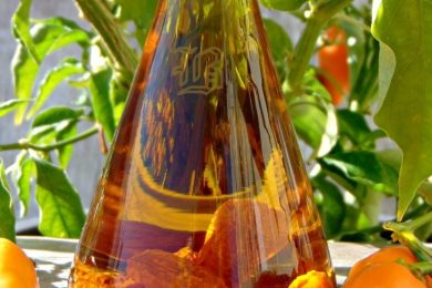 Olio piccante di habanero orange
