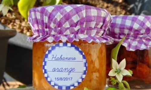 Habanero. Crema  di habanero orange
